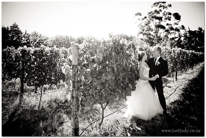 Franschhoek-wedding-48