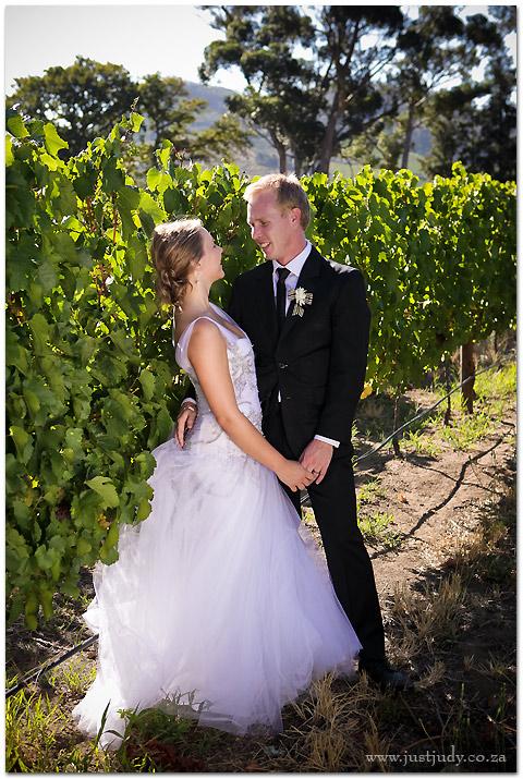 Franschhoek-wedding-49