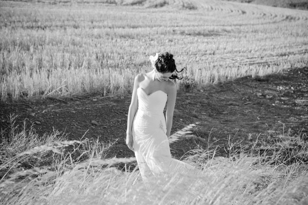 Weddings142