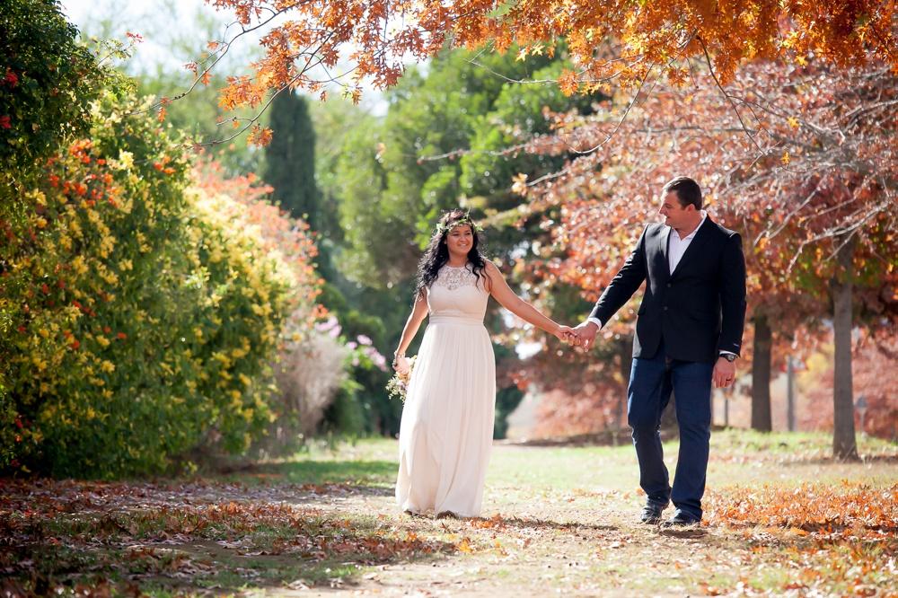 Weddings162